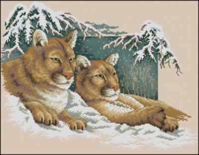 dimensions 13655 snowy cougars